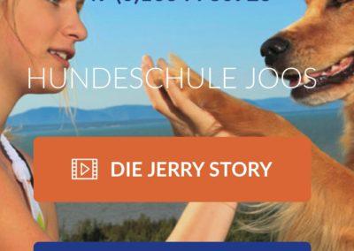 Hundeschule Klaus Joos | Offenburg