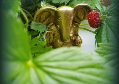 Ganesha Lounge | Offenburg