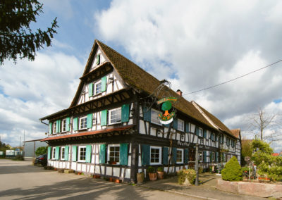 Grüner Baum Linx| Rheinau